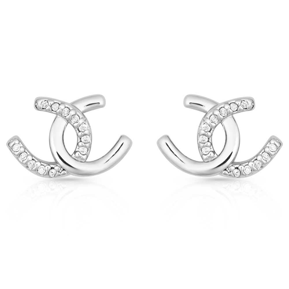 Horseshoe Happiness Post Earrings
