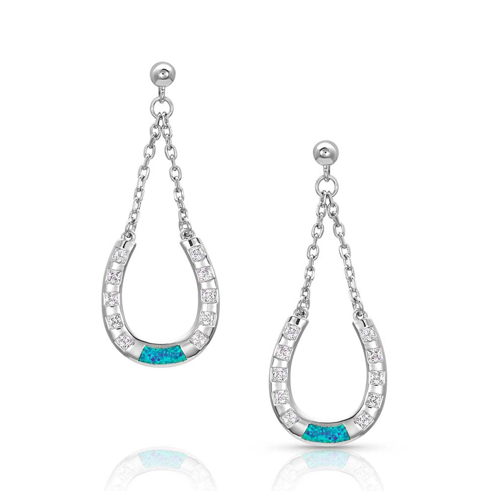 At The Center Of It All Horseshoe Earrings