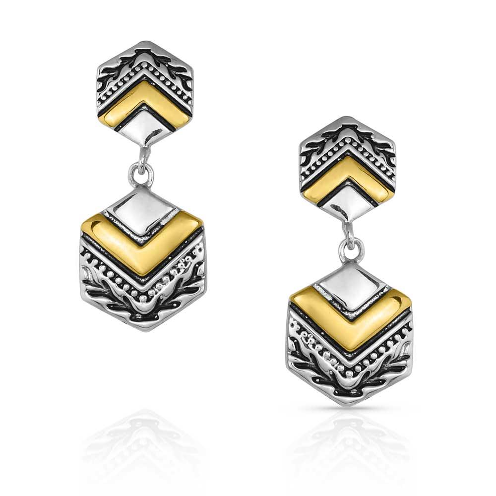 Charmed Chevron Silver Earrings