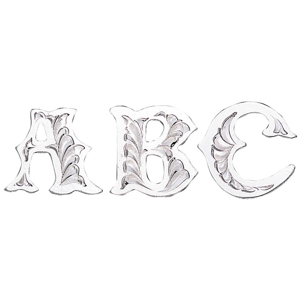 Silver Trim Letter