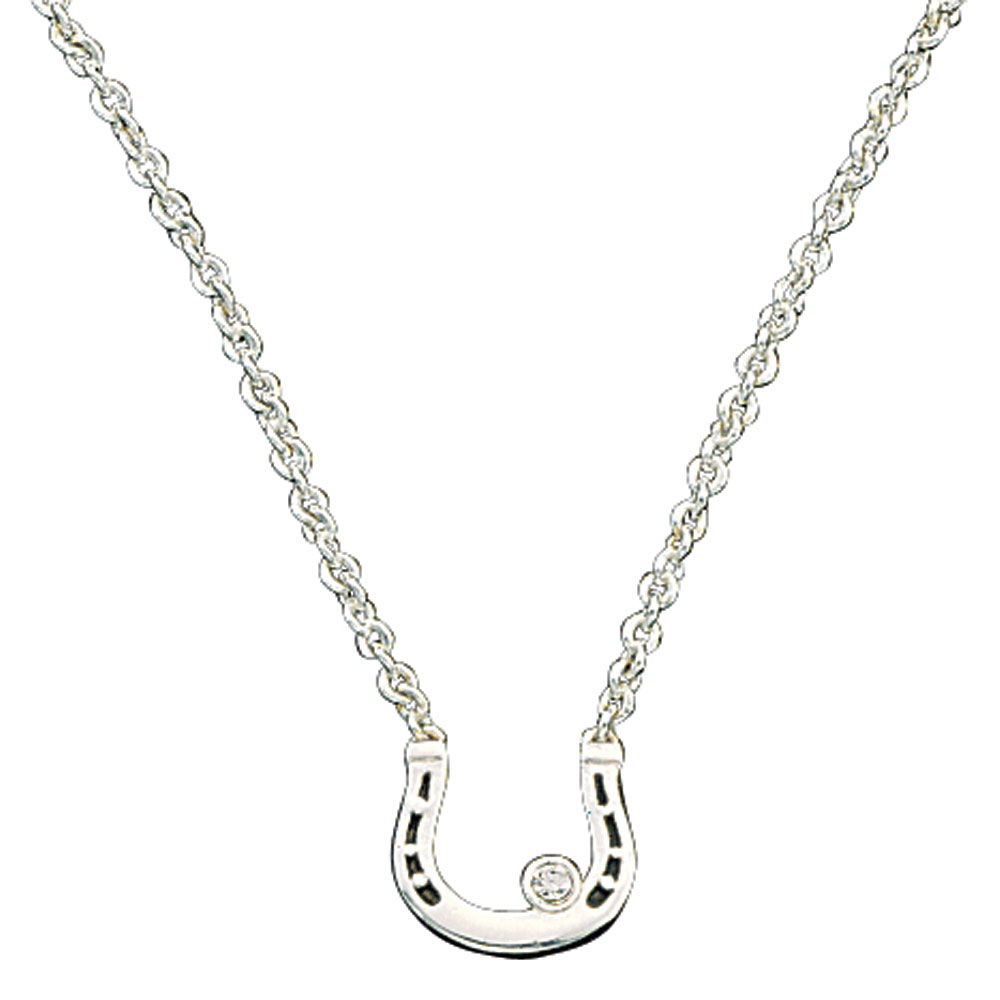 Small Horseshoe with Crystal Necklace