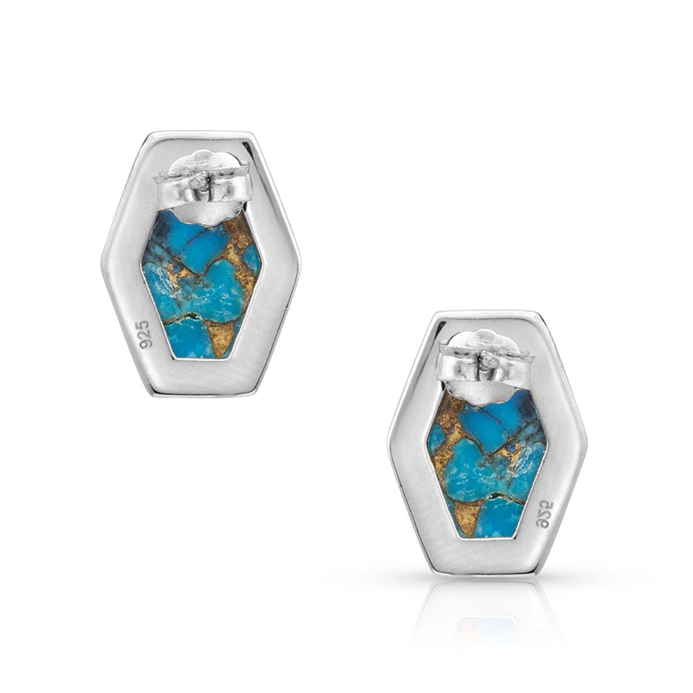 Sterling Lane Fearless Turquoise Post Earrings