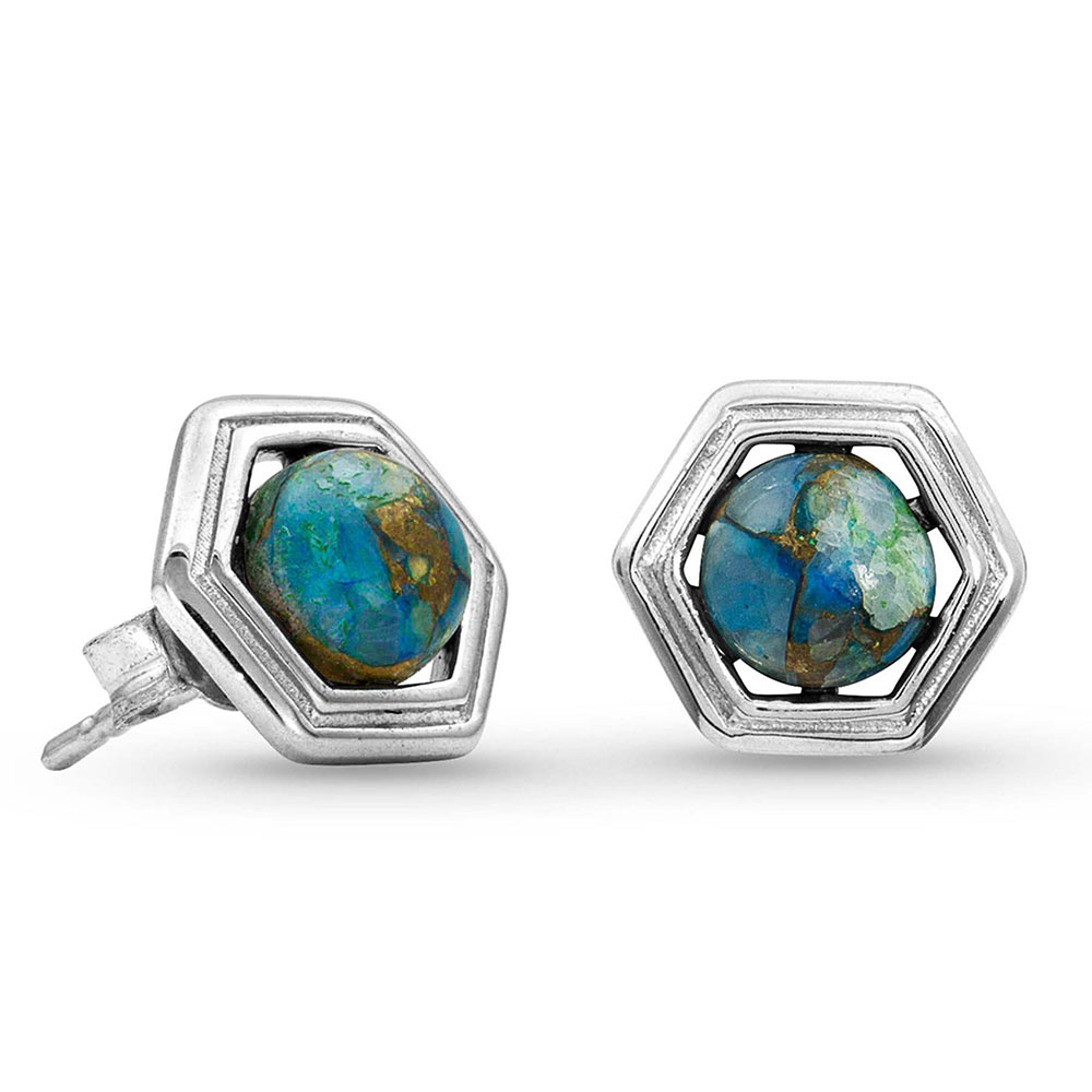 Pursue the Wild Another Mountain Turquoise Earrings
